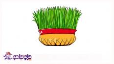 نکات طلایی کاشت انواع سبزه عید