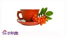 دمنوش های گیاهی(زنجبیل-میوه گل نسترن)
